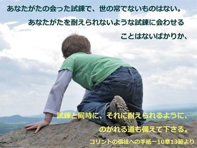 child-395918.jpg