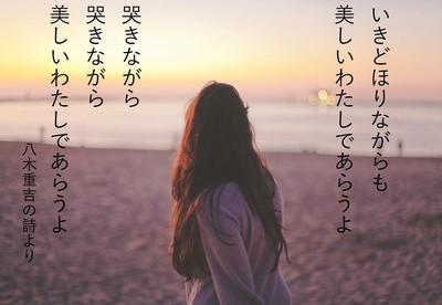 sunset-yagi.jpg