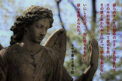 angel2021.jpg