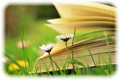 book_202005.jpg