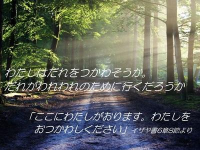 road201901.jpg