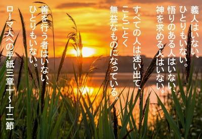 sunrise-r.jpg
